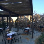 la-rotonda-giardino-salicornia