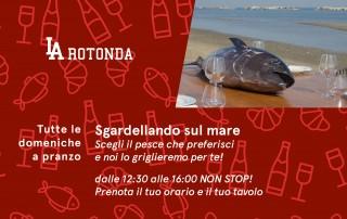 larotonda_banner_20210503